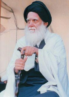 السيد محمد محمد صادق