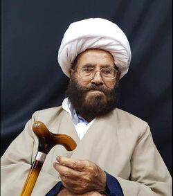 M Hussain Najafi.jpg