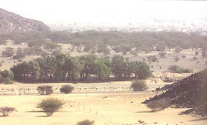 A photo of Ghadir Khumm region