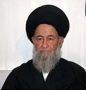 سید محمدعلی علوی گرگانی.JPG